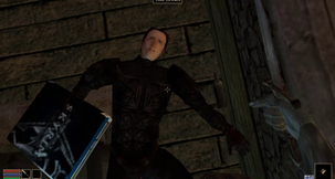 The Elder Scrolls III: Morrowind Immersive Todd...
