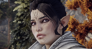 Dragon Age: Inquisition Lady's Elf Inky's Mod