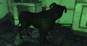 Fallout 4 Kody Dogmeat Retexture Mod