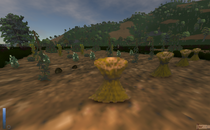 The Elder Scrolls II: Daggerfall Harvestable Crops Mod