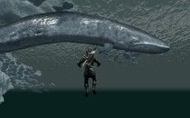 The Elder Scrolls V: Skyrim Blue Whales Mod