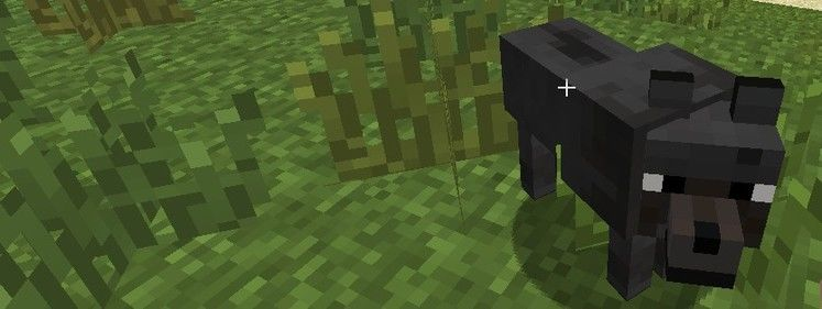 1.4.1 Minecraft update makes wet wolves less scary
