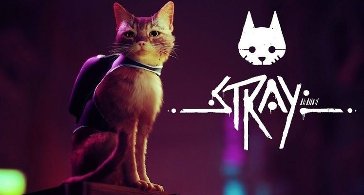 Third-Person Cat Adventure Game Stray Delayed, Gameplay Trailer Shows Off Puzzles, Murky Locations