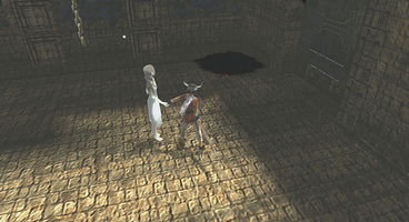 Trophies spilled for Ico & Shadow of the Colossus Collection