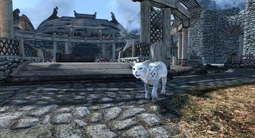 This Skyrim Special Edition Mod Lets You Have Your Very Own Cat Pal