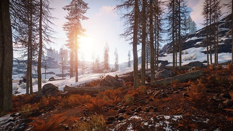 Rust Twitch Drops - How to Earn In-Game Rewards By Watching Streamers