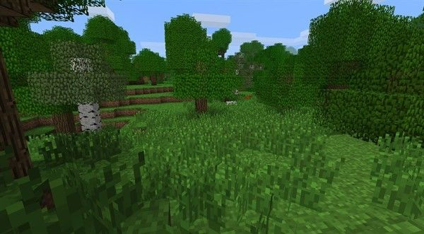Minecraft update brings grass, mushrooms, and other delights