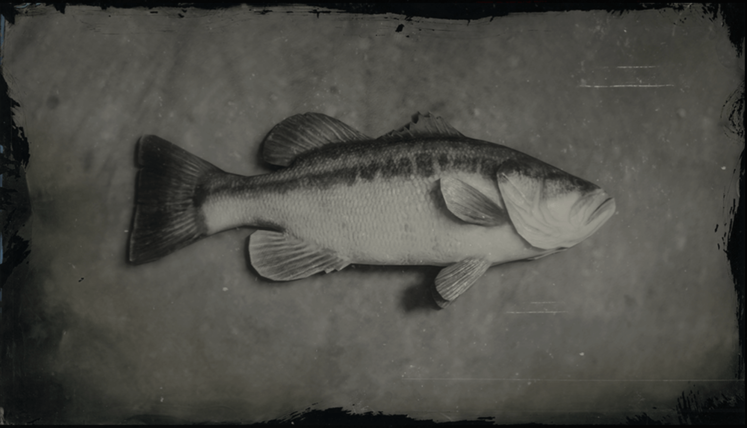 Red Dead Online Largemouth Bass Location Guide