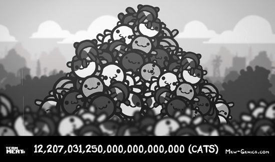 Mew-genics offers over 12 sextillion kitties