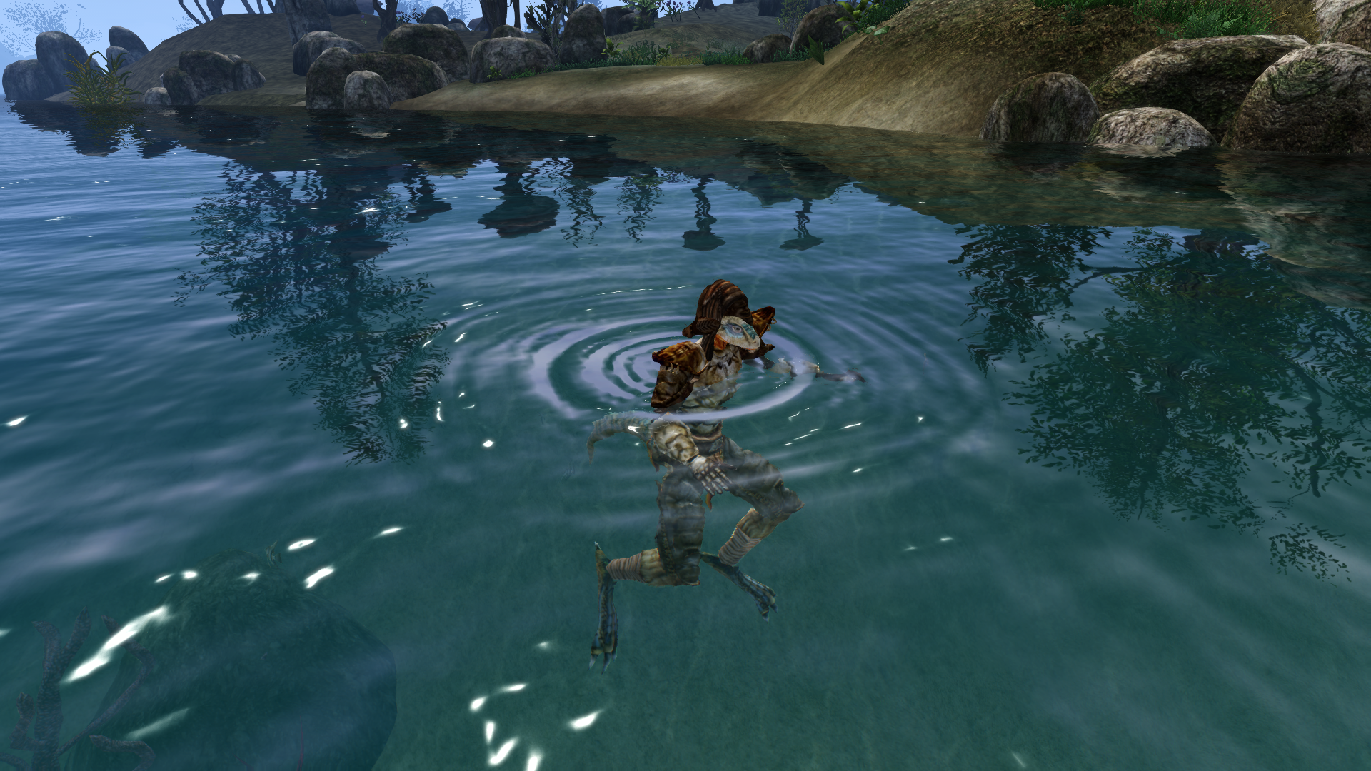 Argonian Racial Swift Swim Mod - The Elder Scrolls III: Morrowind