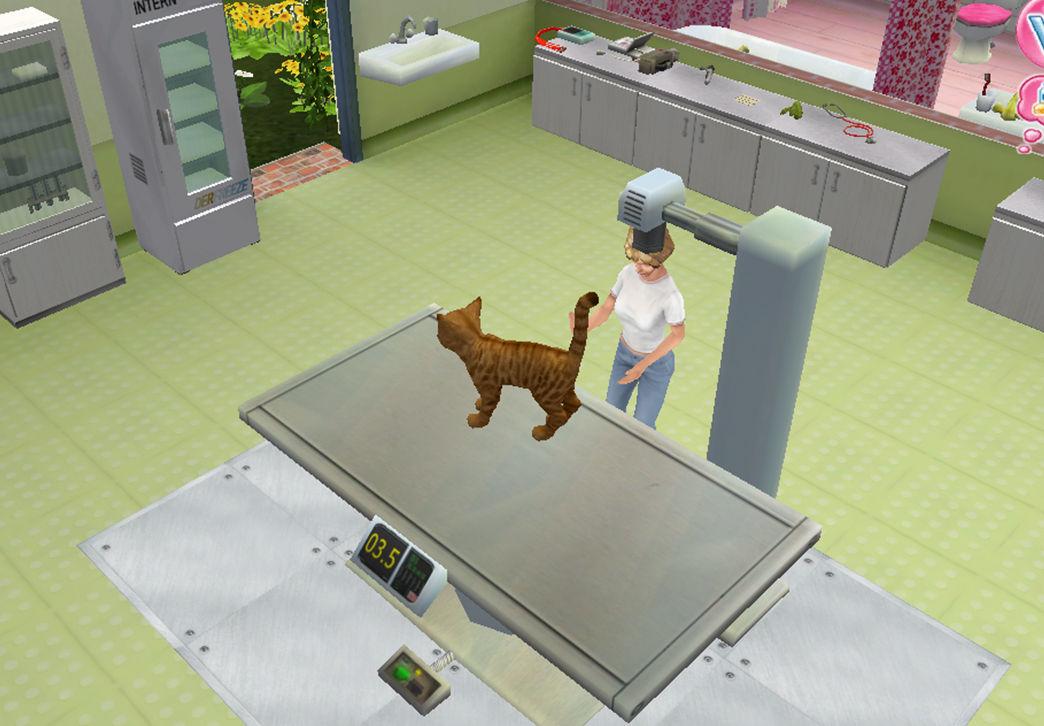 Animal Hospital Pet Vet 3d Screenshots Gamewatcher