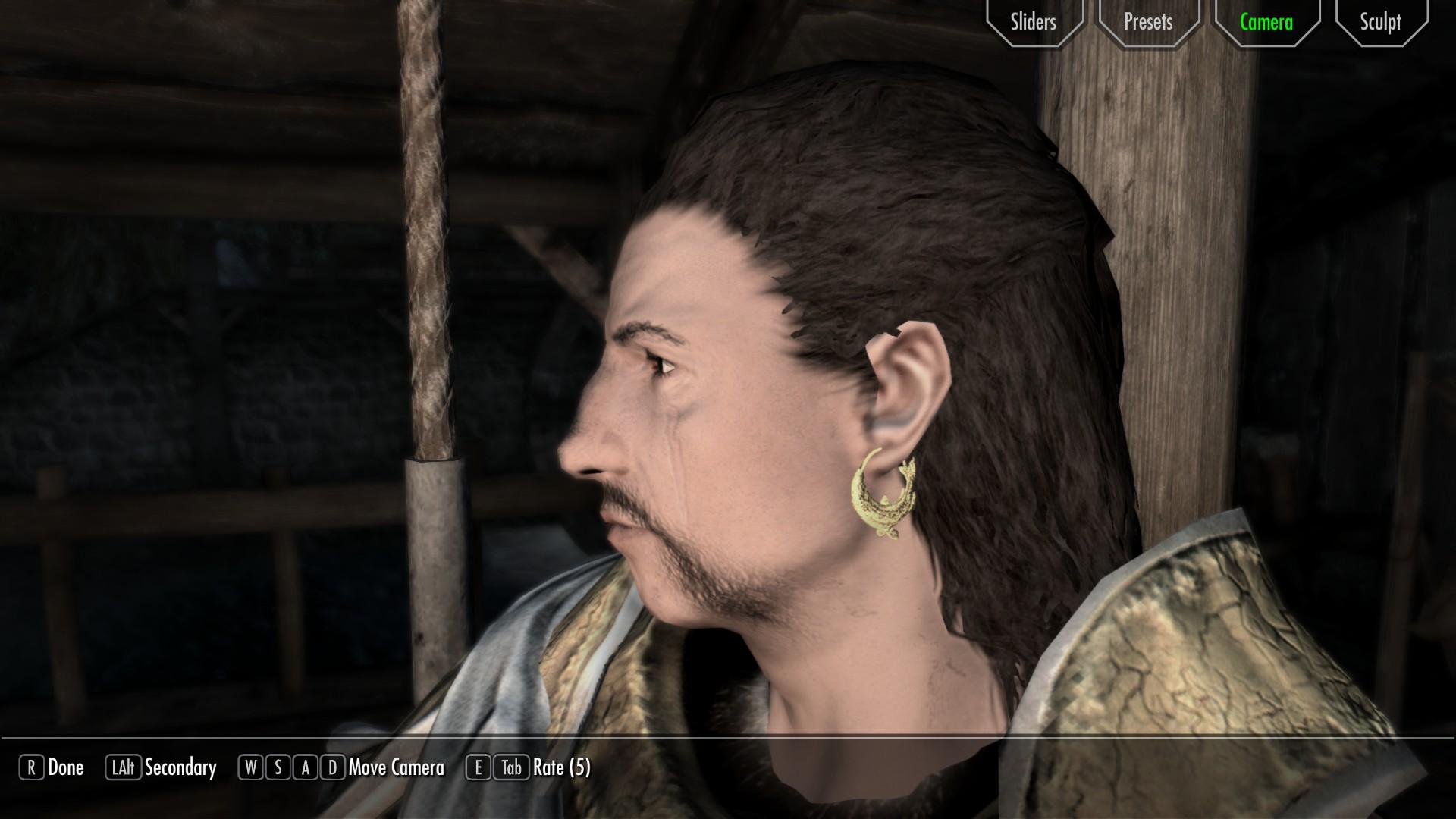 Earrings For All Mod - The Elder Scrolls V: Skyrim Mods   GameWatcher