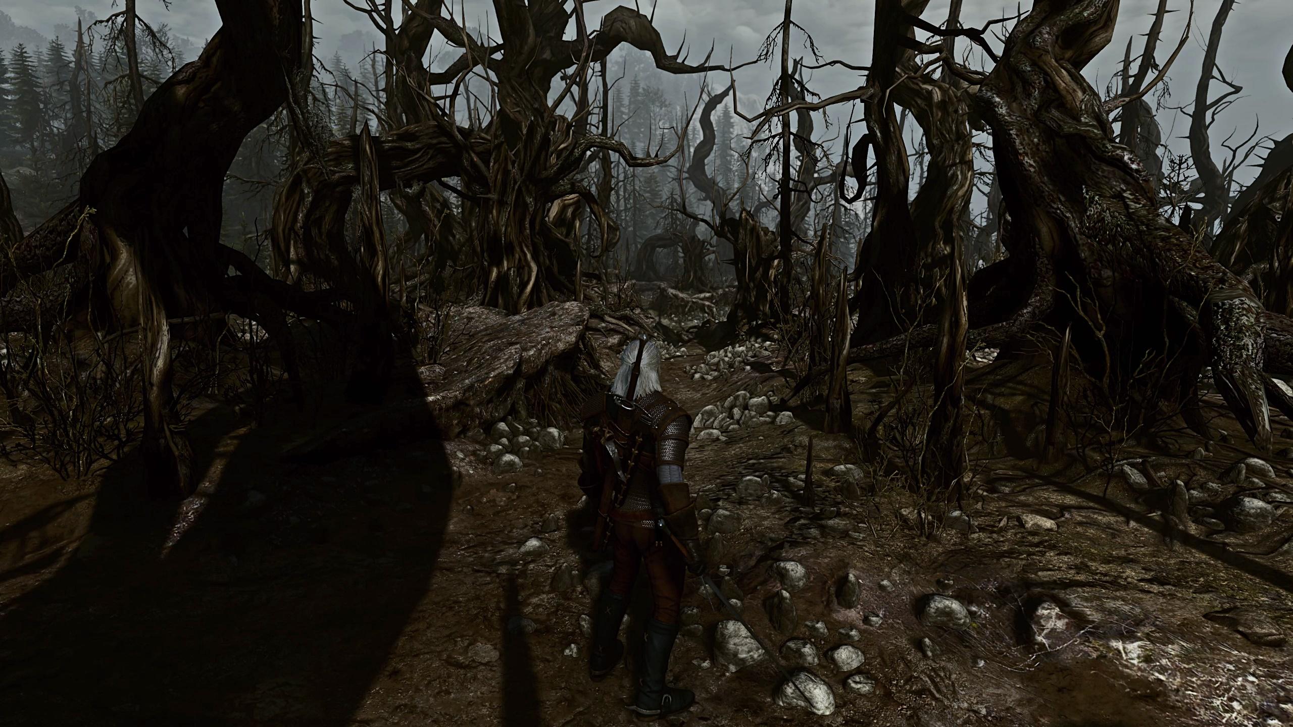 Witcher 3 Mod List Reddit